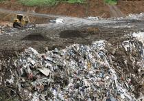 Закон о переходе на новую систему сбора и утилизации отходов принят в 2014 году, но в действие до сих пор не вступил, поскольку регионы не провели необходимую подготовительную работу