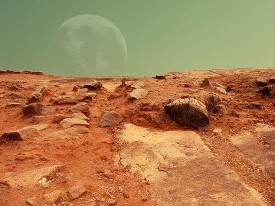 СМИ: будущих покорителей Марса помогут защитить чернобыльские грибы