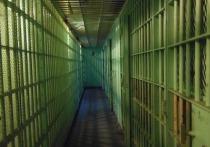 Высокий суд Лондона постановил арестовать экс-следователя МВД Павла Карпова