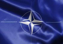 Официальный представитель Белого дома Шон Спайсер прокомментировал неловкий инцидент между Дональдом Трампом и премьер-министром Черногории Душко Марковичем в ходе саммита стран НАТО в Брюсселе