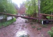 От урагана пострадал дом главного редактора