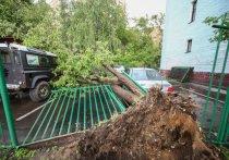 Исторический ураган в Москве: самые страшные видео очевидцев