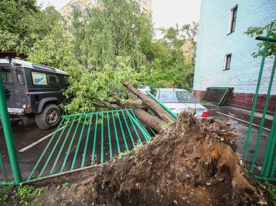 Деревья как спички, гаражи - картонки и снесенная крыша Кремля