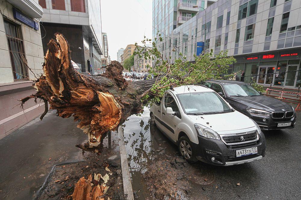 На Москву обрушился ураган-убийца: есть погибшие