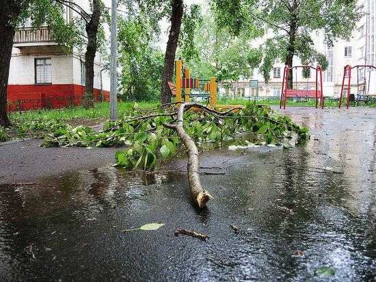 Наводнения и засухи станут нормой