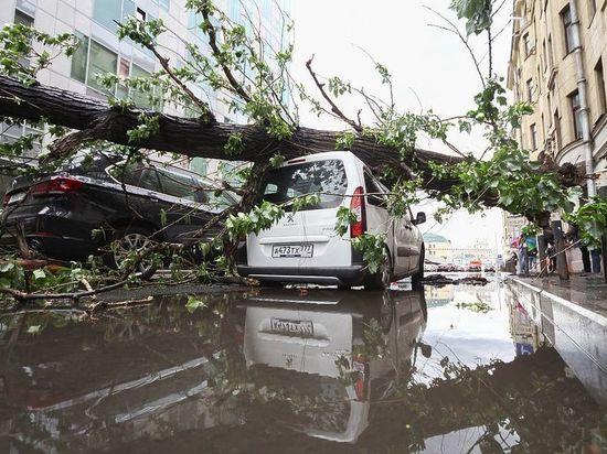 МЧС: мощный шторм обрушится на 22 региона России