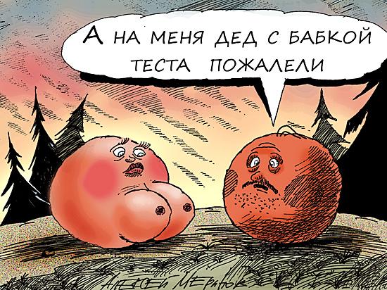 У России не женское лицо: сестер милосердия сменили волчицы