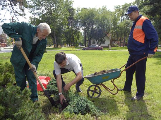 В день защиты окружаюшей среды экологи призывают не засаживать город сорняками