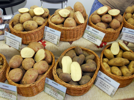 С начала года в Москве больше всего подорожал картофель