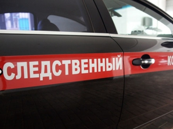 СКР заинтересовался видео с жестоким избиением московской школьницы сверстницами