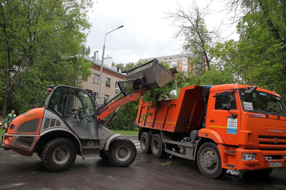 В Москве ликвидируют последствия урагана: поваленные деревья только начали вывозить