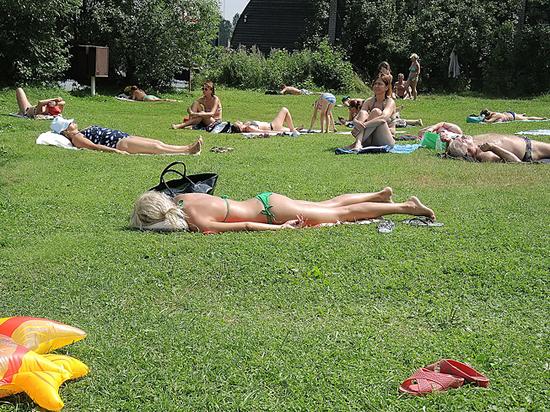 В столичном Департаменте природопользования рассказали о планах на лето
