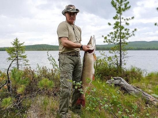 Загадка президент-рыбы: сколько весила пойманная Путиным щука