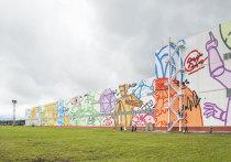 Самое большое граффити в России нарисовали в Выксе