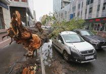 Скончался еще один пострадавший от майского урагана в Москве
