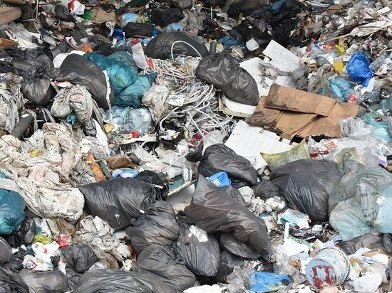 """Вице-спикер Рады и лидер парламентской фракции пошли на крайние меры в борьбе с """"мусорной блокадой"""" во Львове"""
