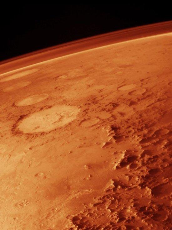 На Марсе уфологи нашли голову животного