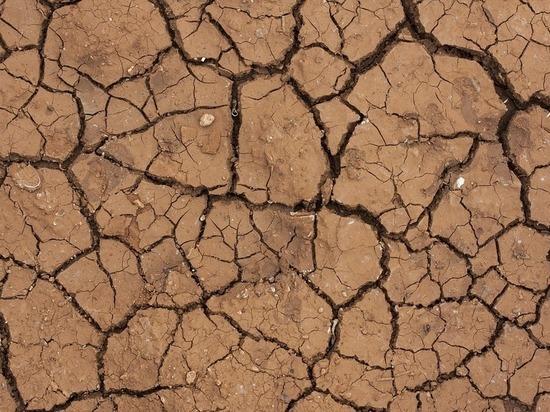 Проблема глобального потепления становится все более актуальной