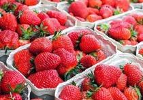 Мыть клубнику раствором уксуса и усиленно принюхиваться к ягодам перед покупкой — такие рекомендации дал Роспотребнадзор