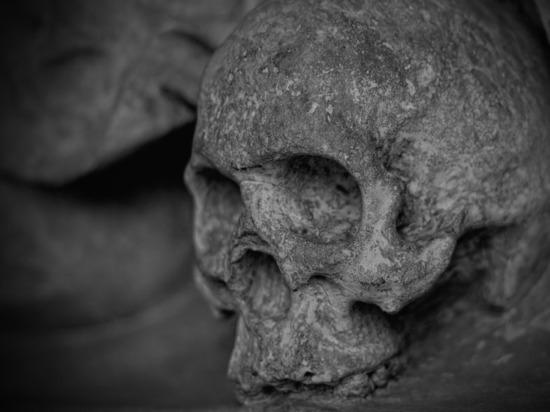 Древняя башня из сотен черепов обнаружена в Мексике