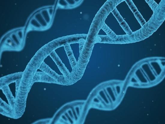 Новое в истории происхождения человека: ядерная ДНК