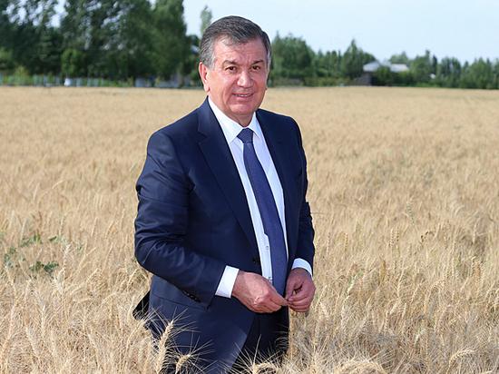 Авторитарный реформатор: президент Узбекистана делает из страны