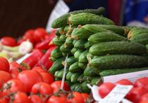 «Овощные» электрички скоро потянутся в столицу