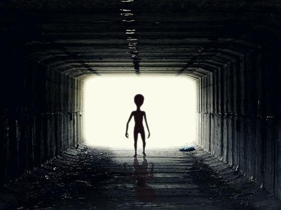 По его словам, гуманоида с другой планеты выдал большой палец