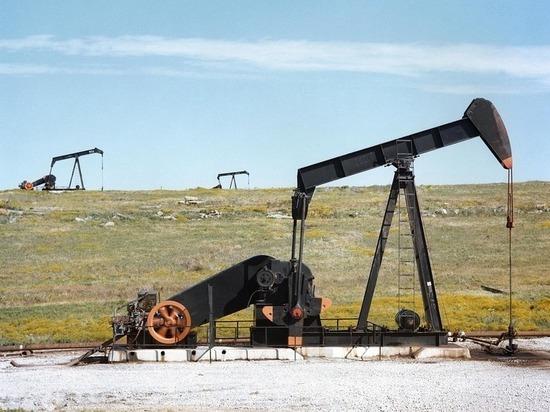 ОПЕК и Россия попали в безвыходное положение на рынке нефти