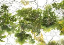 19 сентября в Новой Третьяковке распахнет свои двери Основной проект 7-й Московской международной биеннале современного искусства — «Заоблачные леса»