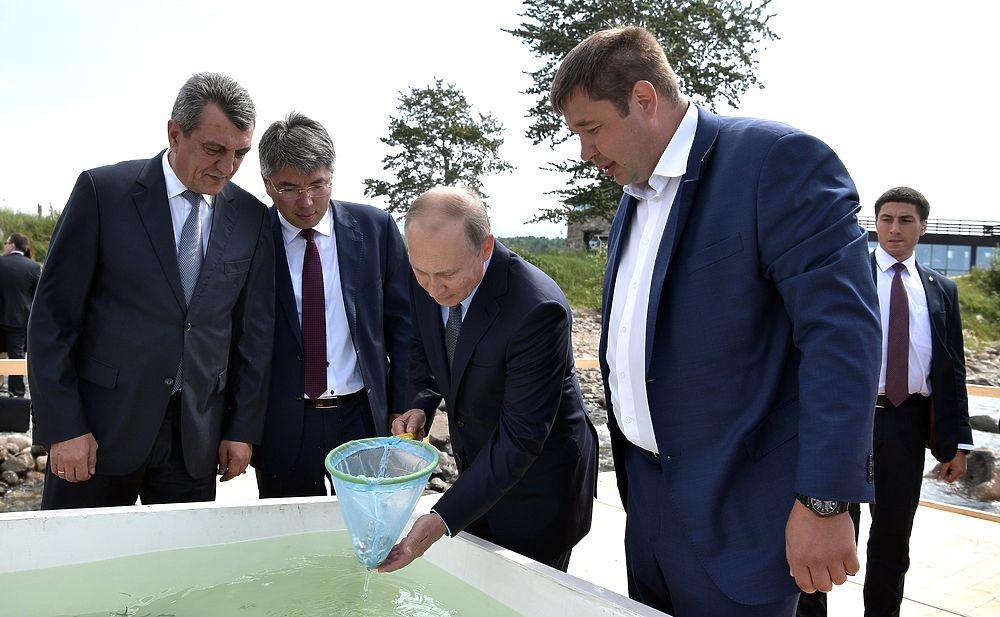Путин сачком выгрузил мальков омуля в Байкал