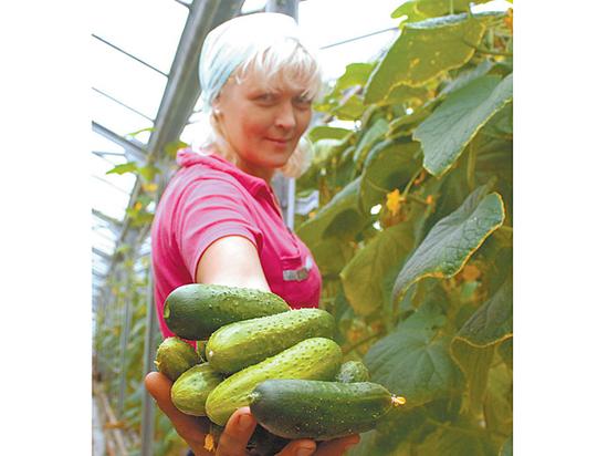 Соотечественники стали экономить на овощах, фруктах и отпуске на море