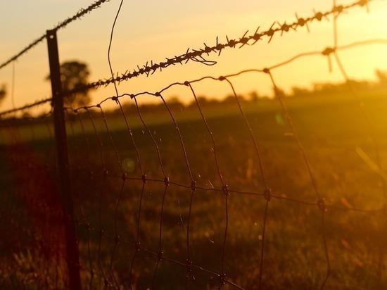 Провал проекта государственной важности: чиновники госпогранслужбы «распилили» украинскую «стену»