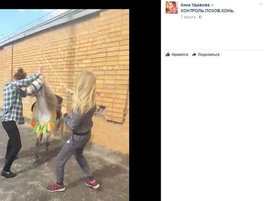 «Драконы» главы Пскова против «лошадниц»: полетели клочки по закоулочкам