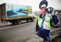 Необычную пропажу обнаружили чиновники на автомобильных трассах Подмосковья