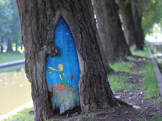 Мы решили художественно оформить поврежденные участки коры на деревьях в московском парке