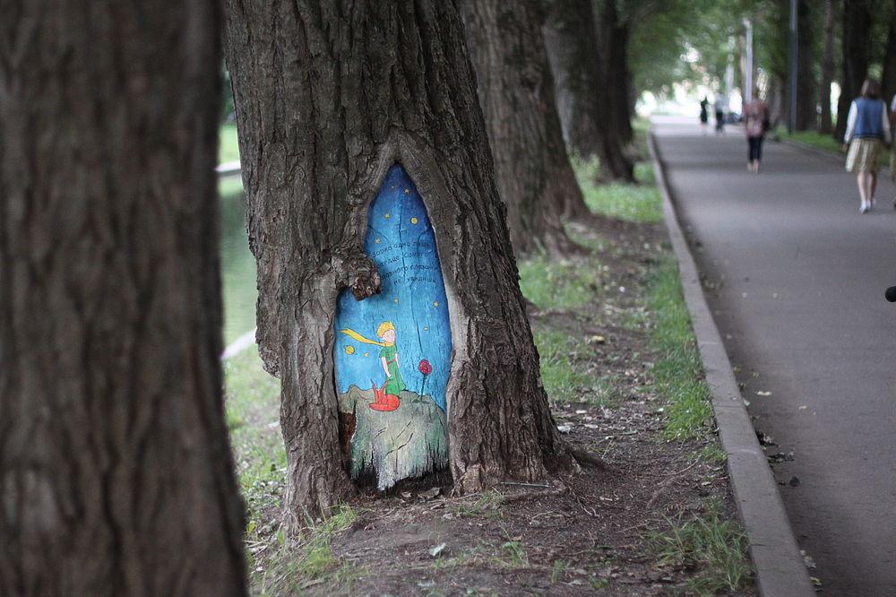 """Арт-акция """"МК"""": рисуем картины на дуплах деревьев"""