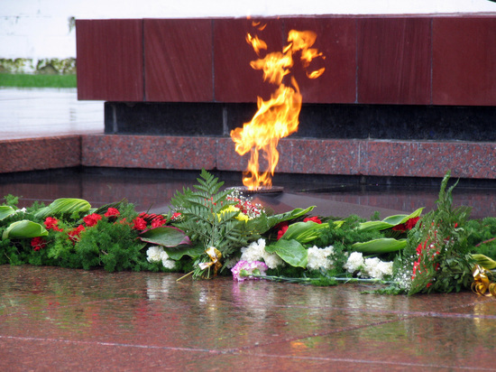 В Александровском саду душевнобольная пыталась задуть Вечный огонь