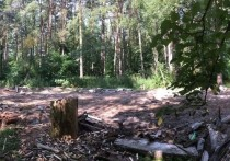 Жители Протвино возмущены последствиями демонтажа хоккейной коробки между домами 1 и 5 по улице Дружбы