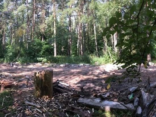 В Протвино разобрали хоккейный корт и бросили