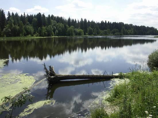 Ничего не отдавали: В Новосибирске опровергли передачу Казахстану озера Сладкое