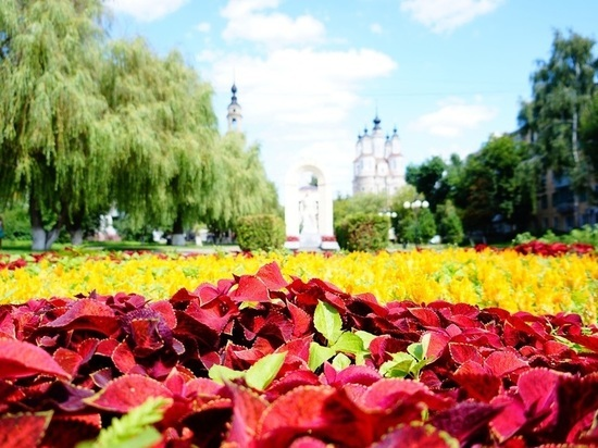 Праздничная Калуга: около 320 тысяч цветов украшают город