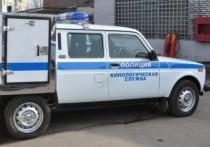 В Санкт-Петербурге капитана полиции Оксану Семыкину насильно поместили в психиатрическую клинику из-за того, что она предъявила претензии своему руководству