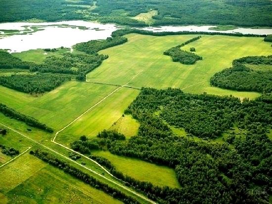 Жители Хабаровска всерьез интересуются бесплатной землей
