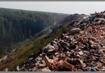 Жители города и Серпуховского района вновь почувствовали едкий дым, причиной которого стали очаги возгорания на закрытом полигоне ТБО «Съяново»
