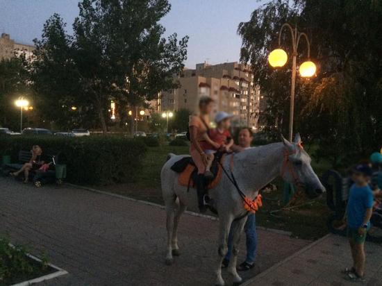 Бизнес на лошадях мешает астраханцам