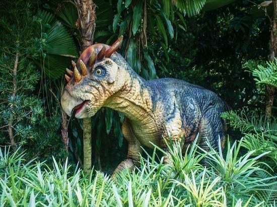 Палеонтологи: мадагаскарских динозавров погубили ядовитые водоросли