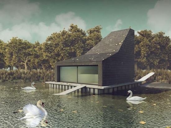 Орнитологи раскритиковали идею построить для московских лебедей домик за 4 миллиона
