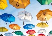 Советами по выбору зонтов поделился Росстандарт в преддверии сезона осенних дождей