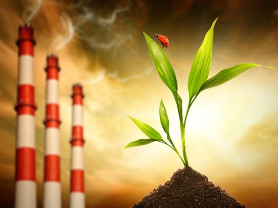Сколько свежего в глотке воздуха: Туластат обнародовал данные по выбросам